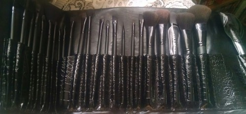 Summer Survival Brushes